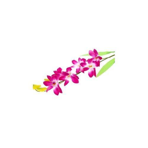 sankt-tsveti-rostova-gde-kupit-orhideyu-zhivie